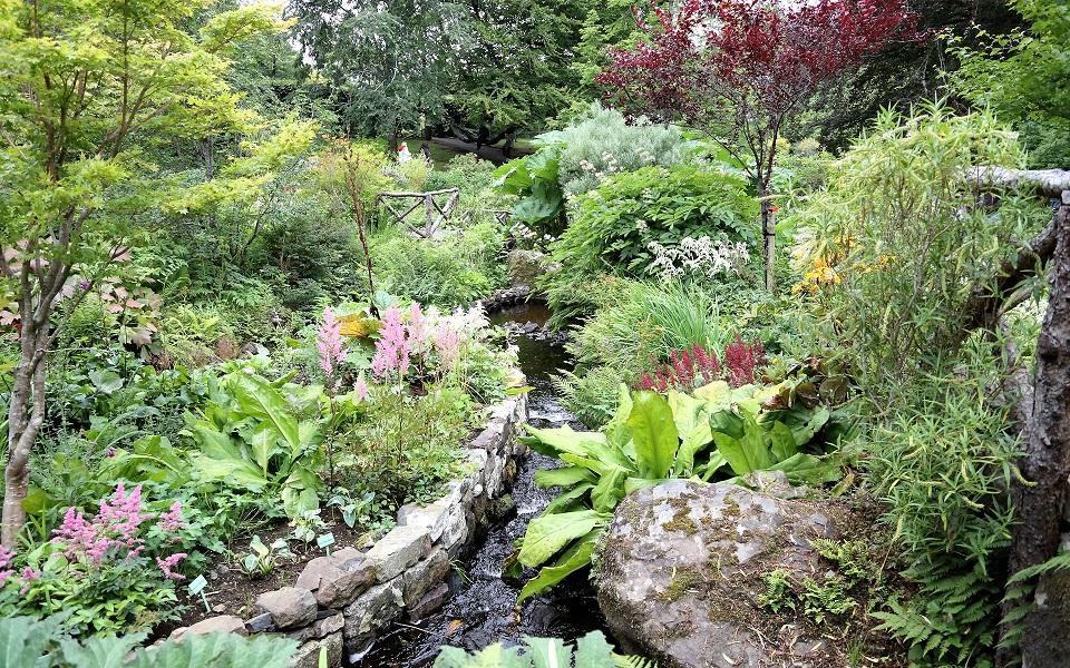 Trädgård vid Dunvegan