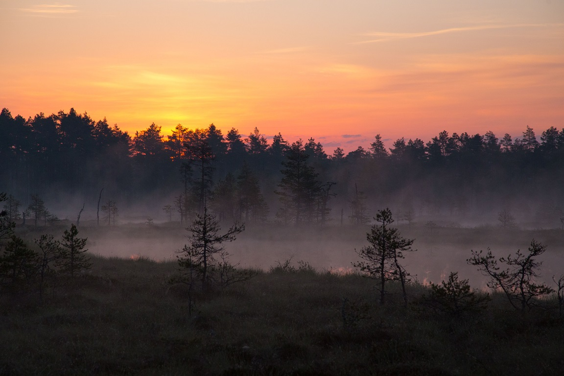 Magisk och mystisk morgon