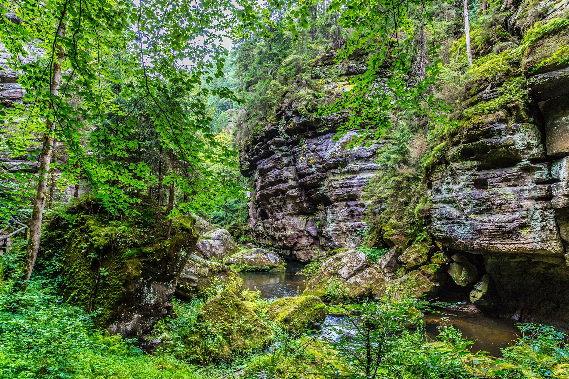 Gorges of Kamenice