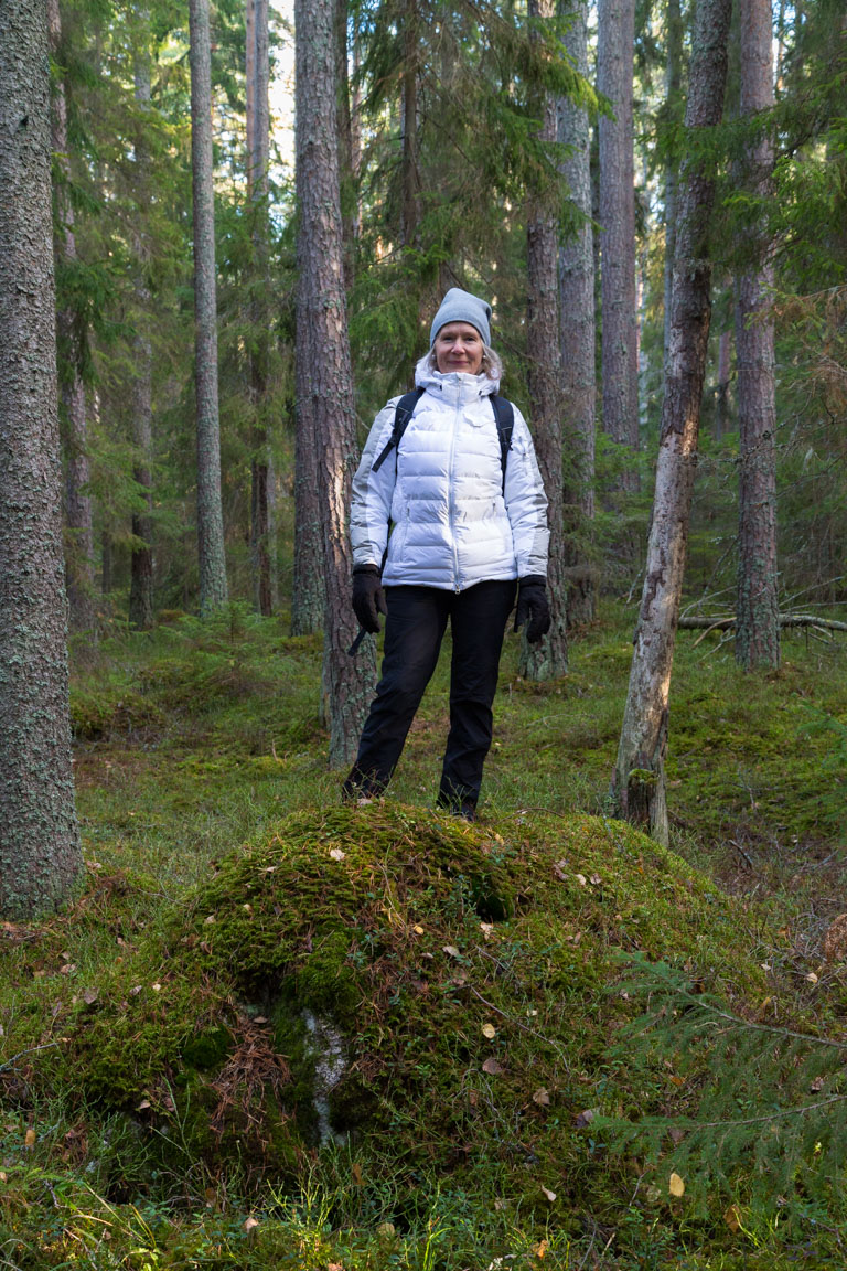 Gunsan i skogen