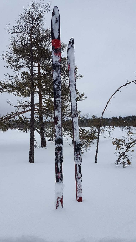 Snöiga skidor