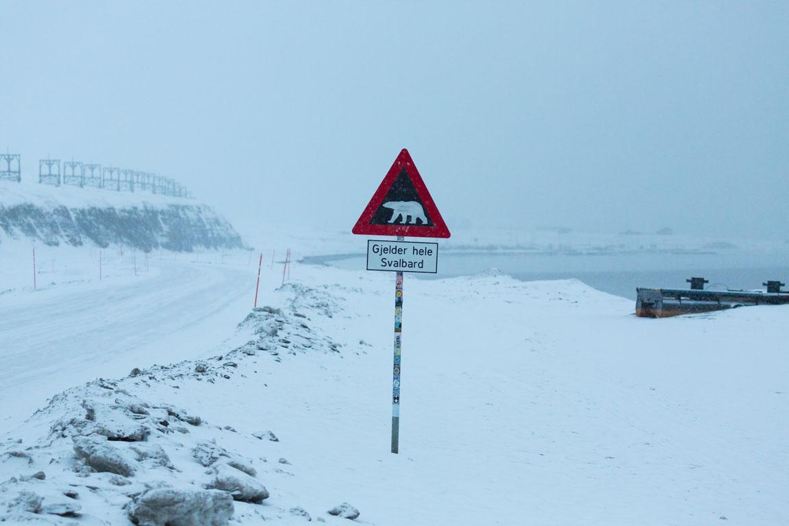 Gjelder hele Svalbard