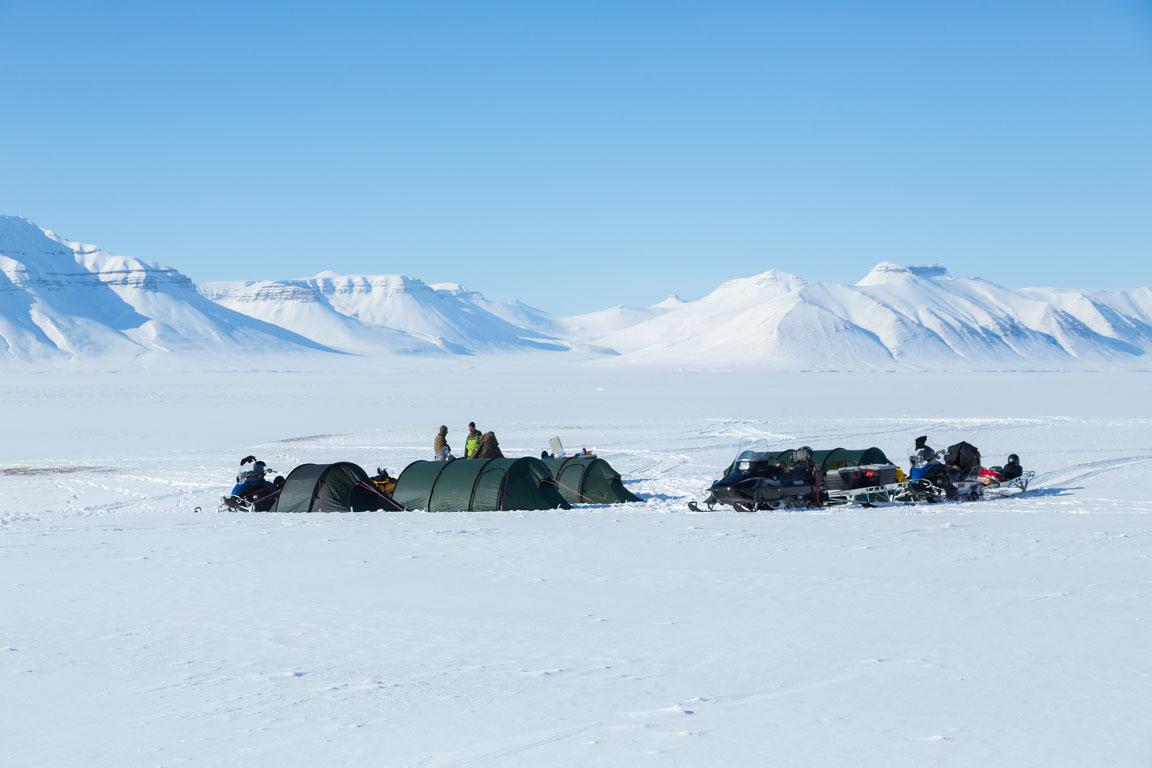 Ny camp