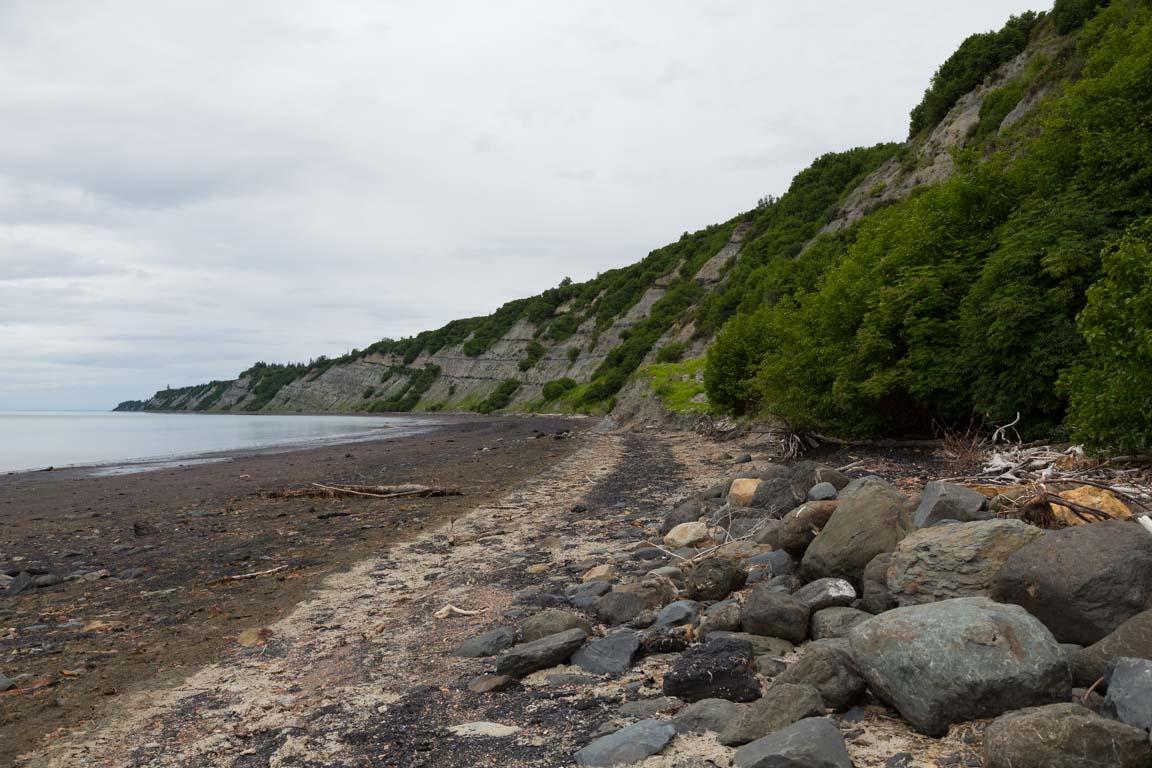 Kolbitar på stranden