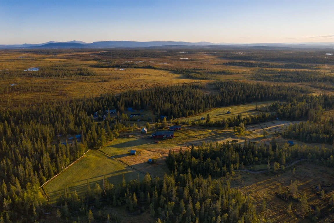 Morgonbild över Lillhärjåbygget