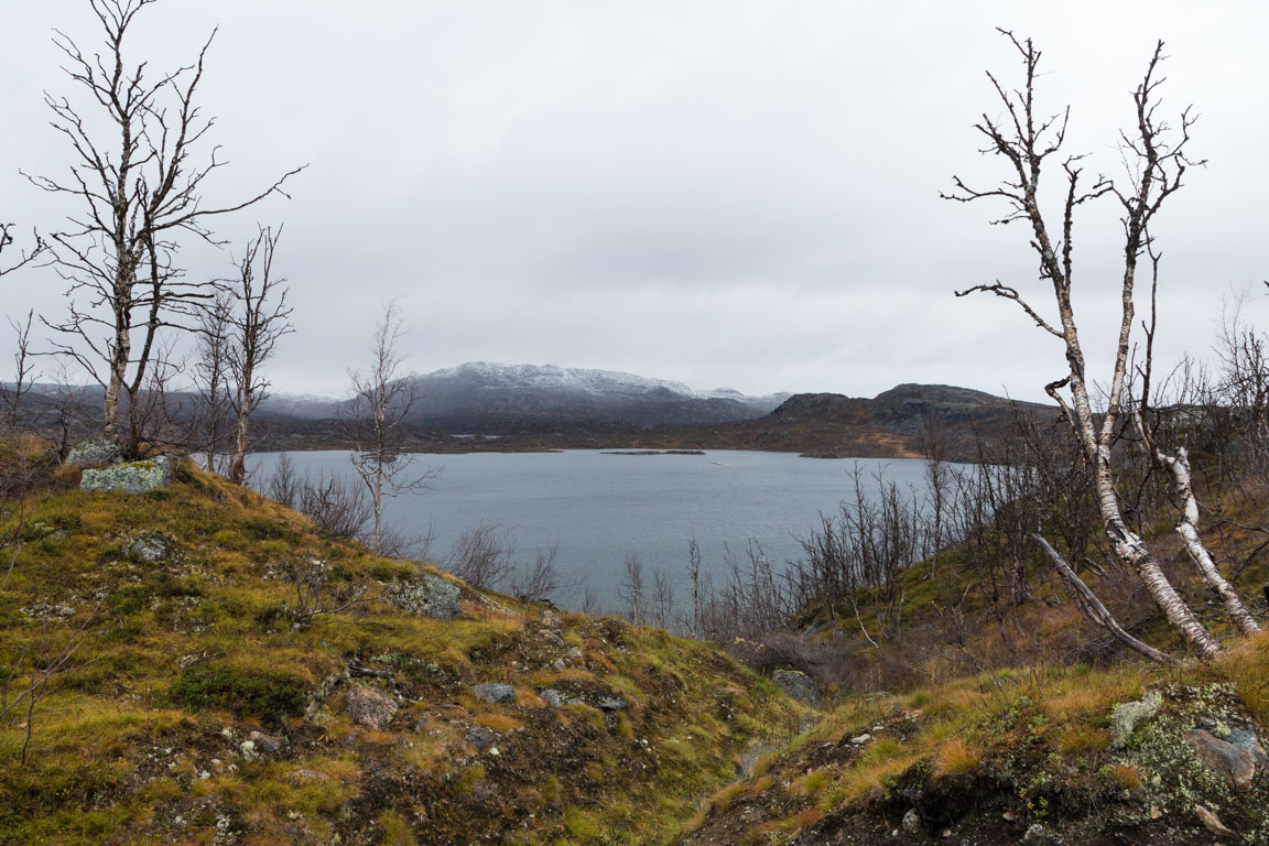 Sjön Vassijaure